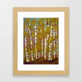 Birch trees-3 Framed Art Print