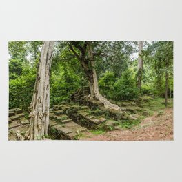 Strangler Fig Trees and Stones in the Angkor Archaeological Park, Siem Reap, Cambodia Rug