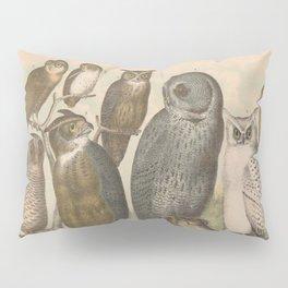 Naturalist Owls Pillow Sham