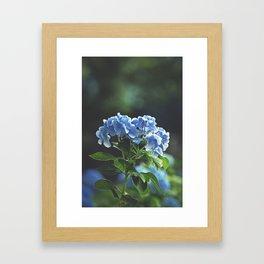 Prodigal Framed Art Print
