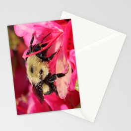 Working Bee Stationery Cards