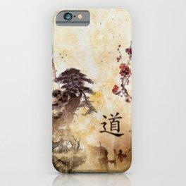 Tao Te Ching iPhone Case