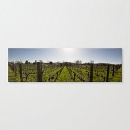 Moody Vines Canvas Print