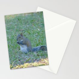 Snack Time Stationery Cards