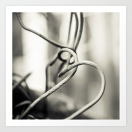 Rusty wire Art Print