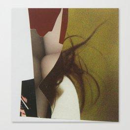 Untitled 02 Canvas Print