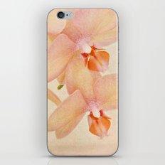 Orchid Falls iPhone & iPod Skin