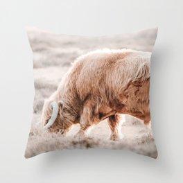 Scottish Highlander Photo   Animal Photography   Blond Scottish Highlander  Throw Pillow