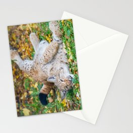 Playful Lynx Stationery Cards