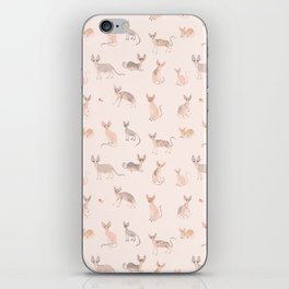 Sphynx Cats iPhone Skin