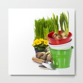 Spring flowers and garden tools  isolated on white Metal Print