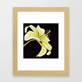 Small Lily Framed Art Print
