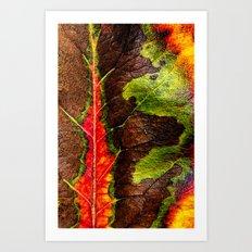 brilliant nature Art Print