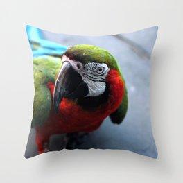 Polly Want a Cracker Throw Pillow