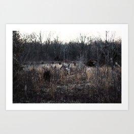 3 Deer Art Print