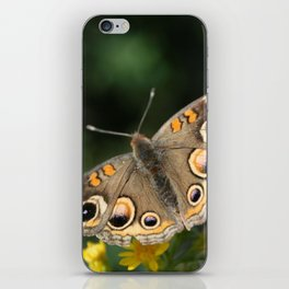 Common Buckeye iPhone Skin