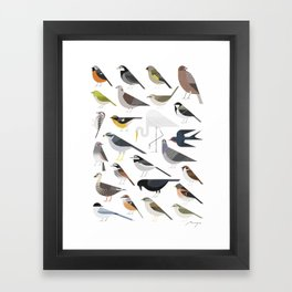 25 Birds Framed Art Print