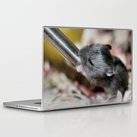 hamster Laptop & iPad Skins featuring Tiny Hamster by IowaShots