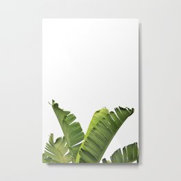 Tropical Banana Plant Leaves Metal Print