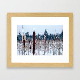 Cattails in the Snow Framed Art Print
