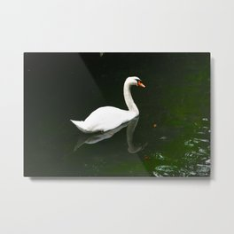 The Swan by Lika Ramati Metal Print