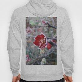 Flower in Frost Hoody