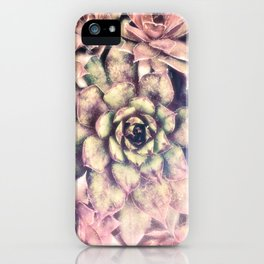 Sempervivum, Succulent Red  Mandala iPhone Case