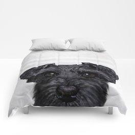 Black Schnauzer Dog illustration original painting print Comforters