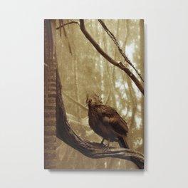 FREE BIRD Metal Print