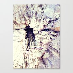 Bleak world of absent law Canvas Print