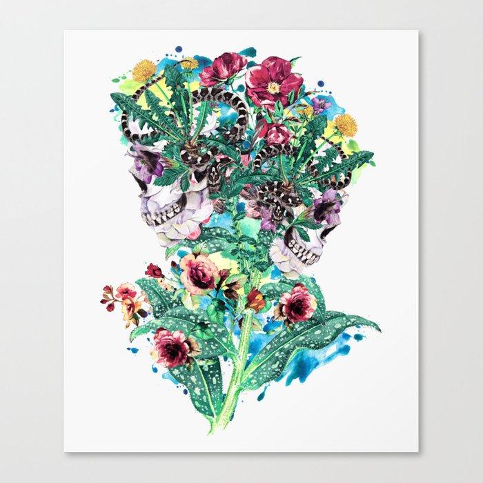 Skull BS Canvas Print