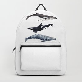 Orca, humpback and grey whales Backpack