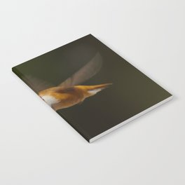 Rufous Notebook