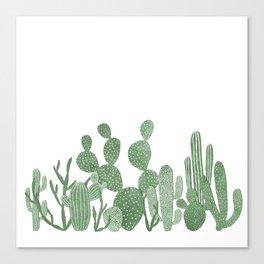 Green cactus garden on white Canvas Print
