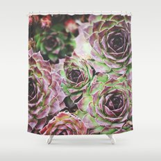 Hens and Chicks Shower Curtain