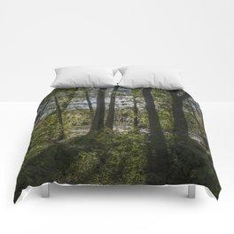 back of the monroe bayou Comforters