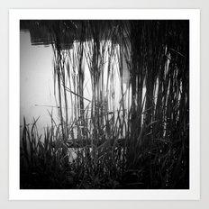 Reeds #1 Art Print