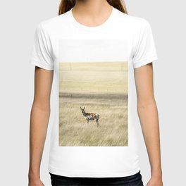 A lone antelope on the Laramie Plains a high grassland south of Laramie Wyoming T-shirt