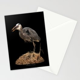 Heron Eating the Mole Stationery Cards
