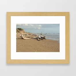 Natural reserve, south of Sicily Framed Art Print
