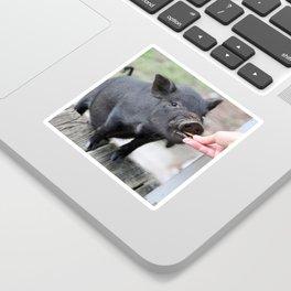 This Little Piggy Eats Snacks! Sticker