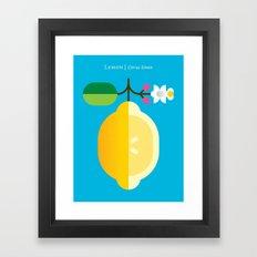 Fruit: Lemon Framed Art Print