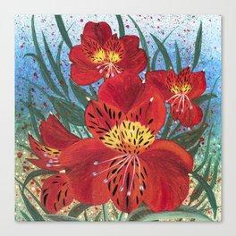 Alstroemeria Flower Canvas Print