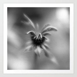 Botanica Obscura #3 Art Print