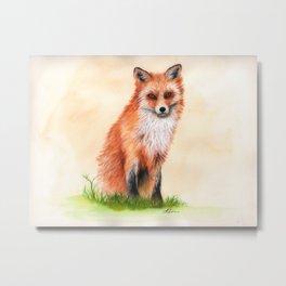 Fox In Watercolour Metal Print