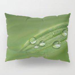 Water drops on green grass Pillow Sham