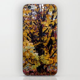 Paintography Of Autumn iPhone Skin