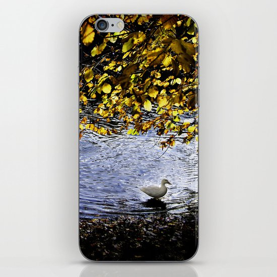 Lonely duck in forests iPhone & iPod Skin