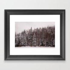 Winter 231 Framed Art Print