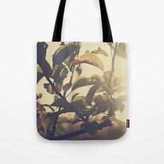 Fall Sun Tote Bag
